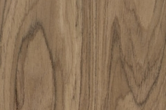 Noble Walnut